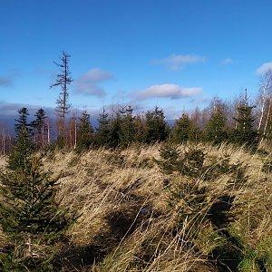ŠenovKK na vrcholu Holý vrch (19.12.2020 11:44)