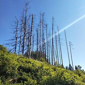 karina gasova na vrcholu Malá Kykula (6.6.2020 9:05)