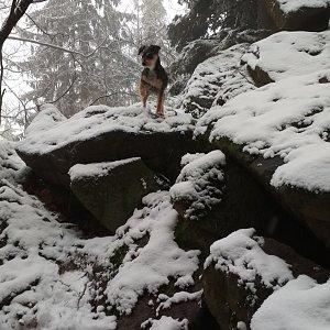 Win Dous na vrcholu Skalka (5.1.2021 14:41)