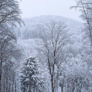 Karolína Moravcova na vrcholu Brdy (13.2.2021 14:11)