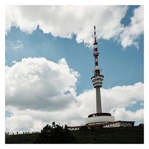 Dobros na vrcholu Kamzičník (4.7.2020 12:00)