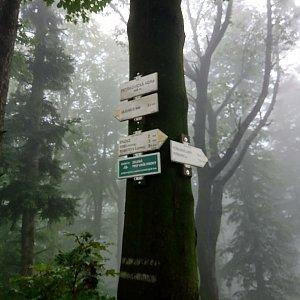 Iva Purmenská na vrcholu Petřkovická hora (27.8.2021 9:48)