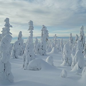 Jar Faldy na vrcholu Sněžné věžičky (20.1.2021 13:46)