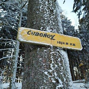 Laina666 na vrcholu Čuboňov (21.1.2020 15:43)