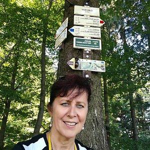 hanule na vrcholu Čuboňov (13.8.2018 15:20)