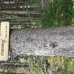 Josef PEPE Kořenek na vrcholu Čuboňov (13.9.2020 9:06)