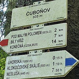Peťulik na vrcholu Čuboňov (10.7.2021 11:48)