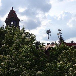 Nojby na vrcholu Černá Studnice (4.6.2016 17:46)