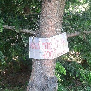 ŠenovKK na vrcholu Malá Stolová (10.6.2019 11:41)