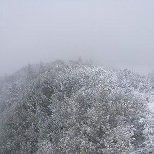 martenzites na vrcholu Schneekogel (9.11.2019 11:20)