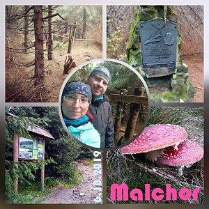 Muška Oro na vrcholu Malchor (6.10.2019 6:25)