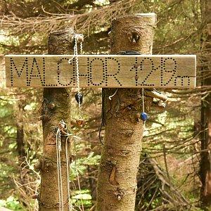 kaltz na vrcholu Malchor (17.6.2019 10:29)