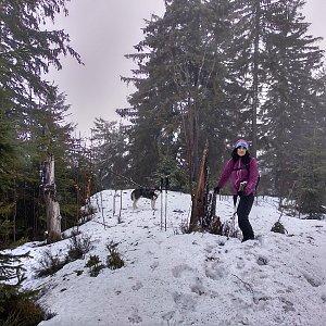 Jana Mayerová na vrcholu Nad Kršlí (10.3.2019 16:41)