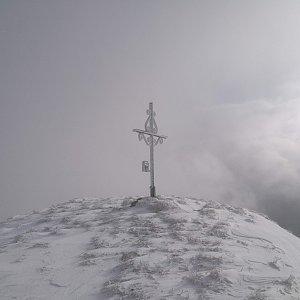 martenzites na vrcholu Blaseneck (30.11.2019 10:57)
