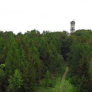 Iveta Válová na vrcholu Hochwald (10.6.2020 10:15)