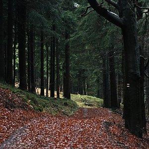 Bouřka na vrcholu Zdislavský Špičák (26.10.2017 13:40)
