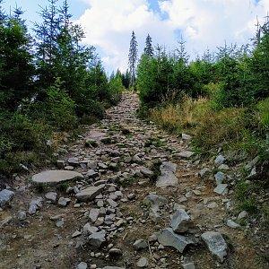 AndrejFlaj na vrcholu Babia Hora (31.8.2019 13:30)