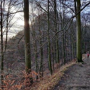 Pavel Martínek na vrcholu Hamerský Špičák (5.1.2020 14:15)