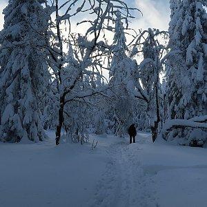 Bouřka na vrcholu Dvorský les (22.1.2021 10:20)