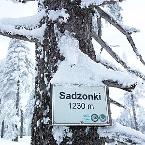 Patejl na vrcholu Sadzonki (16.2.2020 10:31)