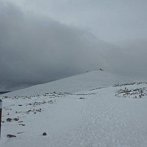 Manjula na vrcholu Sněžka / Śnieżka (18.3.2019 13:51)