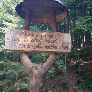 Jana Těšíková na vrcholu Vysoká (31.8.2019 14:49)