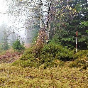Vladimír Grančay na vrcholu Jelení vrch (9.11.2019 14:34)