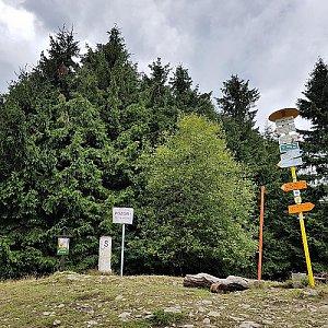 lubob na vrcholu Malý Javorník (28.7.2017 14:00)