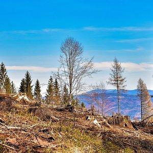 Jiřka Niedobová na vrcholu Kyčera (16.4.2020 13:15)