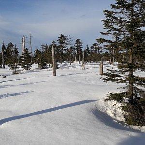 Jar Faldy na vrcholu Na Kneipě (20.2.2021 15:40)