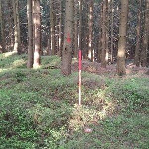 Win Dous na vrcholu Janikula (1.5.2020 18:20)