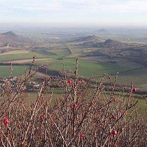 p_e_t_r_95 na vrcholu Lipská hora (18.11.2020)
