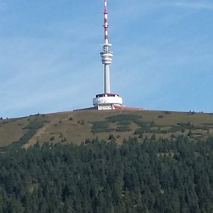 Arni na vrcholu Praděd (6.8.2019 11:55)