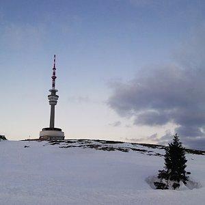 Kačička na vrcholu Praděd (25.4.2021 6:00)