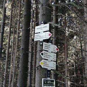 Jiří Tomaštík na vrcholu Buchtův kopec (7.3.2021 11:40)