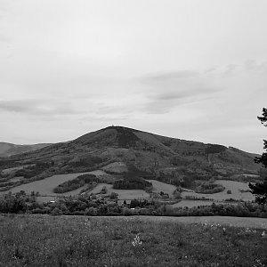 Fíkus na vrcholu Na Peklech (10.5.2020 15:43)