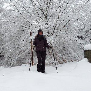 Iveta Válová na vrcholu Dlouhá hora (8.1.2021 11:44)
