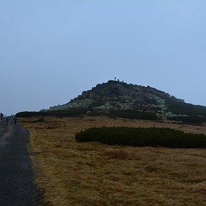 Jar Faldy na vrcholu Violík (14.11.2020 13:25)