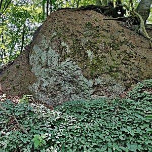 Pavel Martínek na vrcholu Velký Beškovský vrch (28.6.2020 12:08)