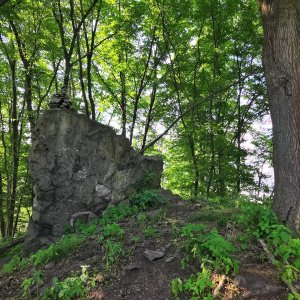 Martin Matějka na vrcholu Šedina (19.6.2021 16:19)