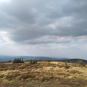 Šárka na vrcholu Keprník (28.9.2018 14:47)