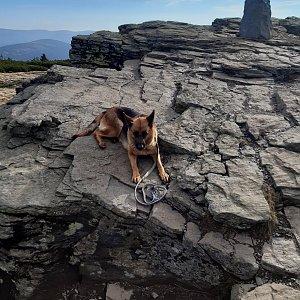 Marcela na vrcholu Keprník (20.10.2021 14:16)