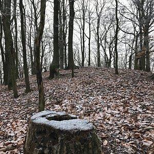 Martin Matějka na vrcholu Dvorský kopec (2.1.2021 10:30)