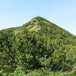ZdenkaV na vrcholu Biele skaly (12.6.2019)