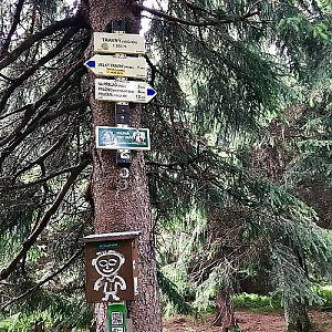 Hanka na vrcholu Travný (22.7.2018 14:17)