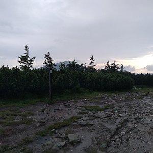 Eliška na vrcholu Svorová hora (16.7.2021 19:16)