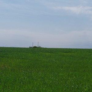 ŠenovKK na vrcholu Kohout (12.6.2021 10:03)