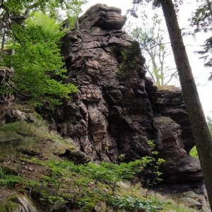 Pepino na vrcholu Vysoký kámen (4.7.2021 12:20)