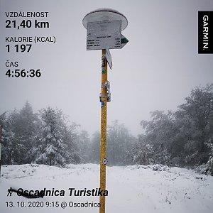 Medvěd Codiak na vrcholu Kykula (13.10.2020 10:15)