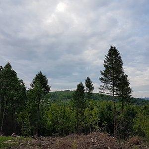 Marcela Kubíčková na vrcholu Obilná (1.6.2021 18:45)